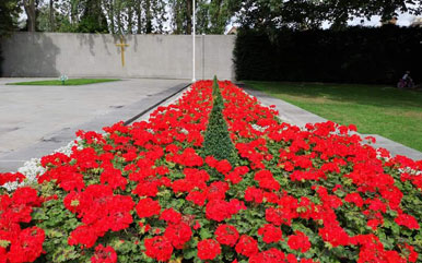 Arbour hill flowerbed